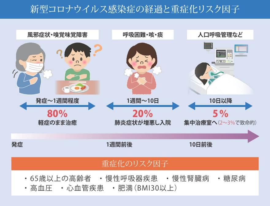 コロナ 肺炎 症状 ウイルス 新型